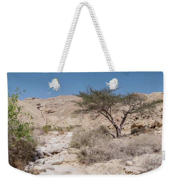 Weekender Tote Bag featuring the photograph Panorama On Genesis Land 02 by Arik Baltinester