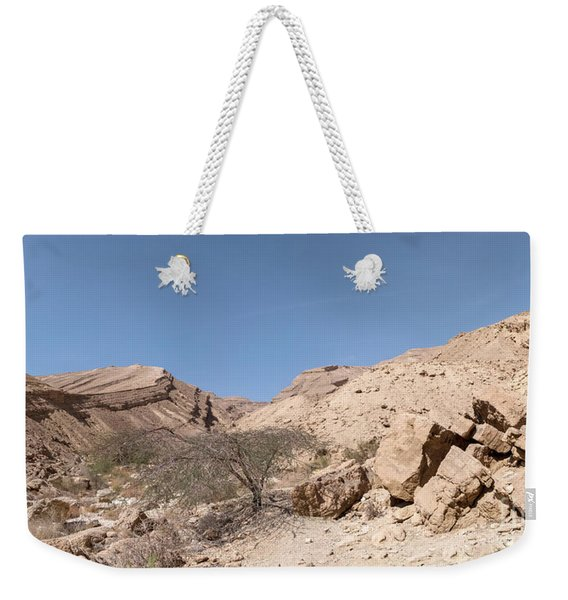 Weekender Tote Bag featuring the photograph Panorama On Genesis Land 03 by Arik Baltinester