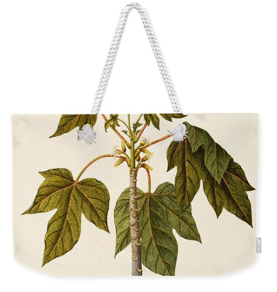 Papaya Tree Weekender Tote Bag