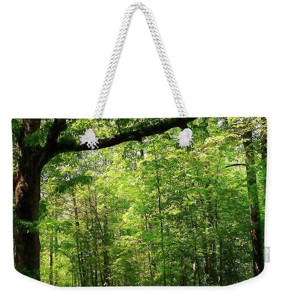 Paris Mountain State Park South Carolina Weekender Tote Bag