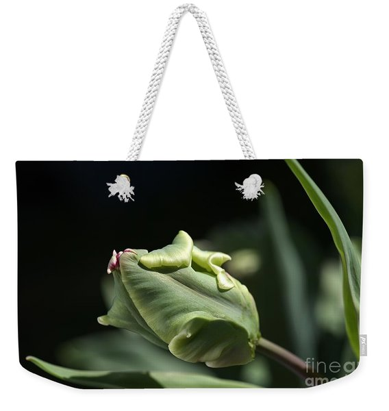Parrot Tulip Bud Weekender Tote Bag