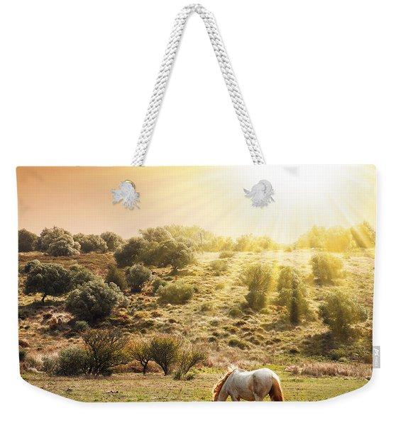 Pasturing Horse Weekender Tote Bag