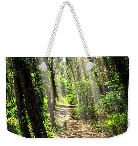 Path In Sunlit Forest Weekender Tote Bag