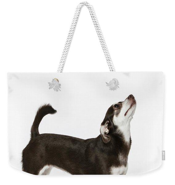 Paula Marshburn  04 Weekender Tote Bag