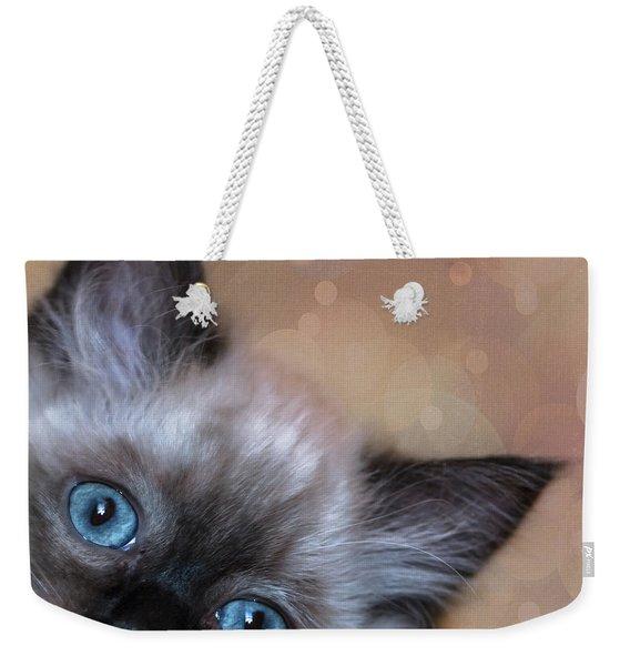 Peek-a-boo 2 Weekender Tote Bag