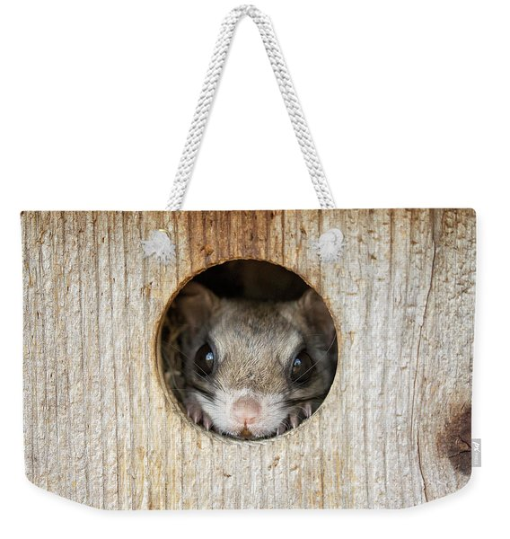 Peek-a-boo Weekender Tote Bag