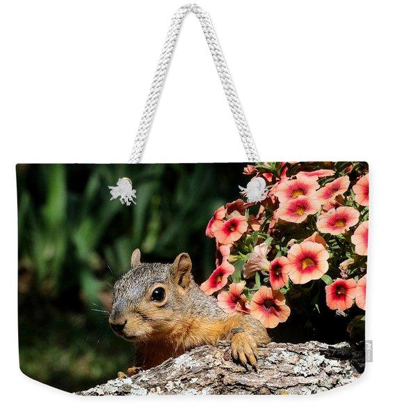 Peek-a-boo Squirrel Weekender Tote Bag