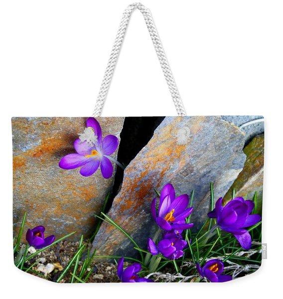 Peek Weekender Tote Bag