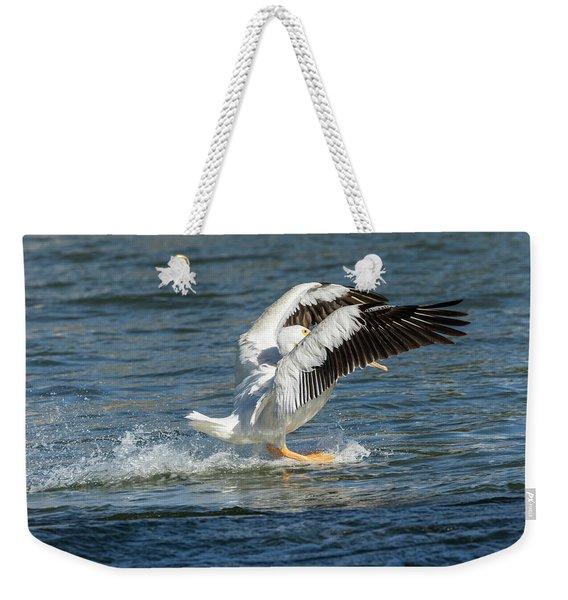 Pelican Landing 2016 Weekender Tote Bag
