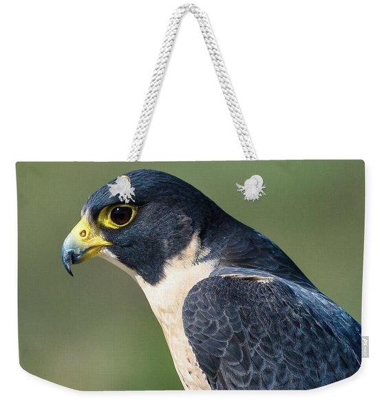 Peregrin Falcon Weekender Tote Bag