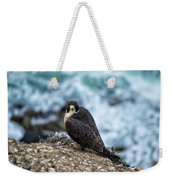 Peregrine Falcon - Here's Looking At You Weekender Tote Bag