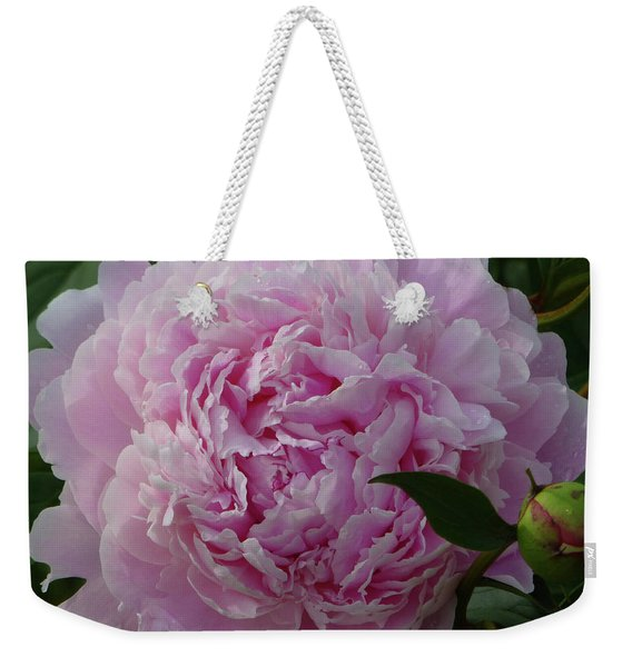 Weekender Tote Bag featuring the photograph Perfection In Pink by Cris Fulton