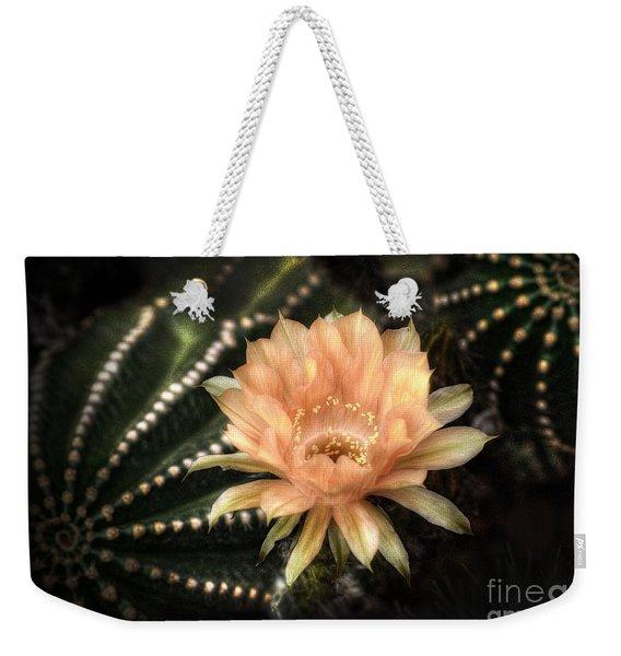 Perfectly Peachy  Weekender Tote Bag