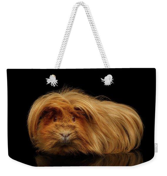 Trump Guinea  Weekender Tote Bag