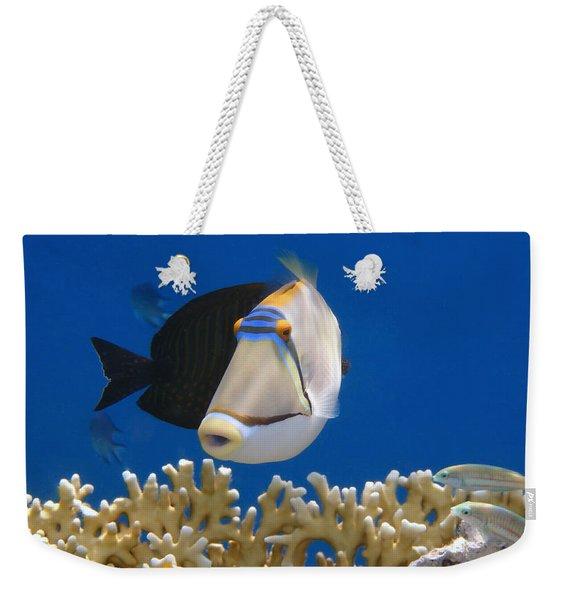 Picasso Fish And Klunzingerwrasse Weekender Tote Bag