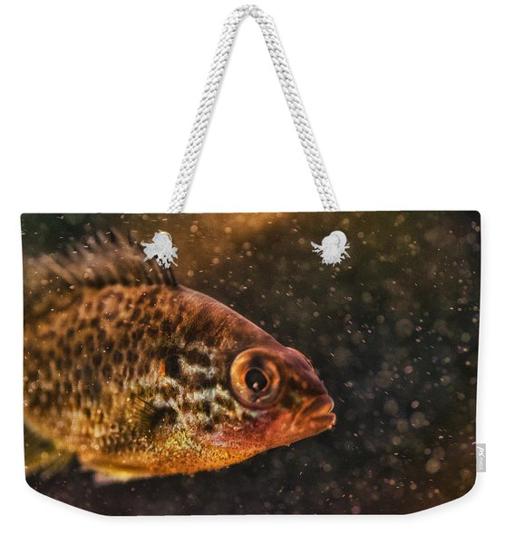 Pices In Aquarium Weekender Tote Bag