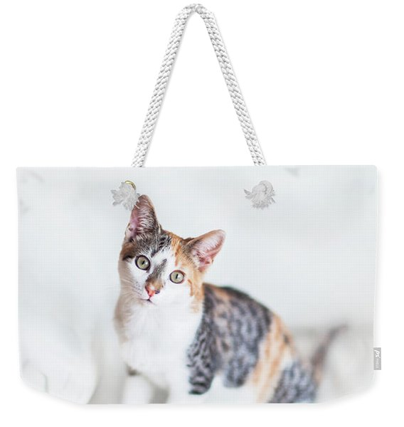 Picture Purfect Weekender Tote Bag