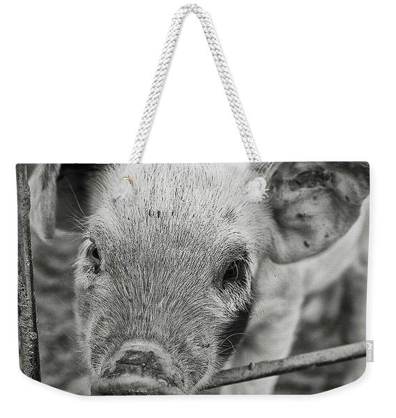Piglet Weekender Tote Bag