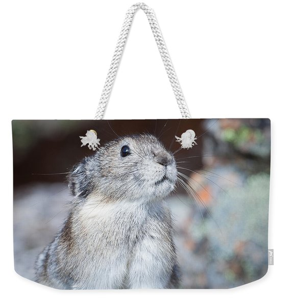 Weekender Tote Bag featuring the photograph Pika Portrait by Tim Newton