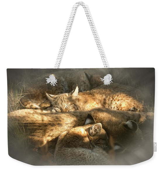 Weekender Tote Bag featuring the photograph Pile Of Sleeping Bobcats by Mary Lee Dereske