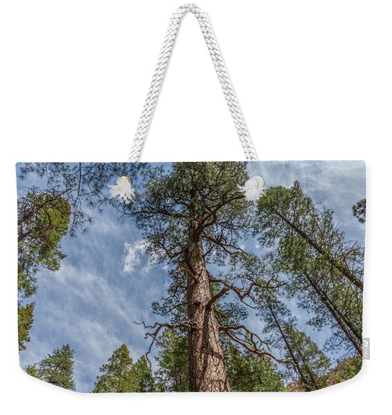 Pine Cathedral On The West Fork Weekender Tote Bag