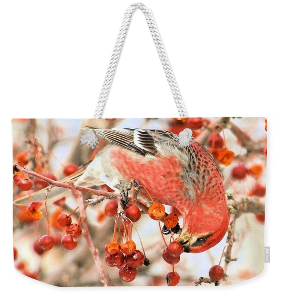 Pine Grosbeak Weekender Tote Bag