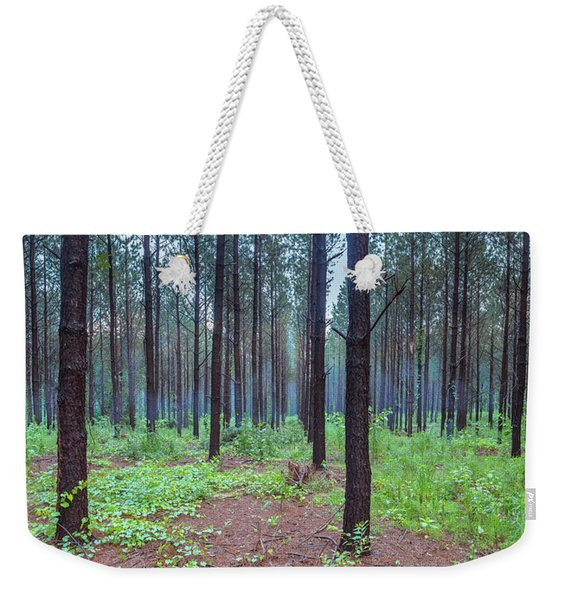 Weekender Tote Bag featuring the photograph Pine Grove And Fog In Charlotte Nc Panorama by Ranjay Mitra