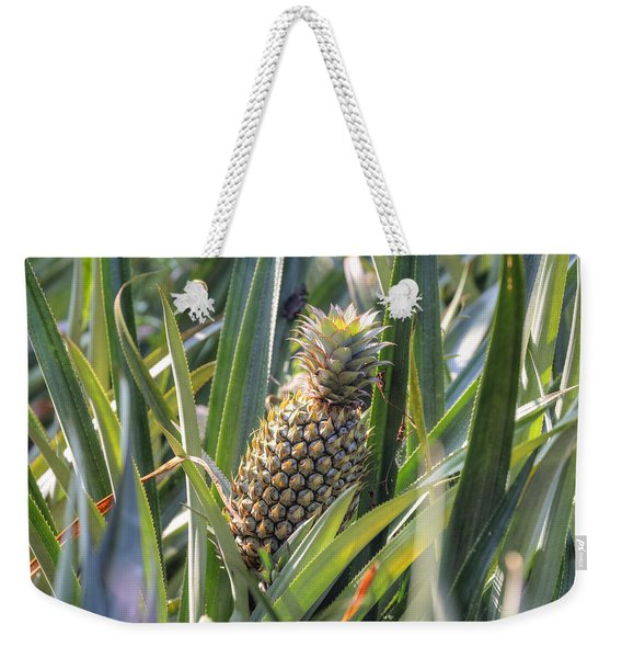 pineapple plantation in Kerala - India Weekender Tote Bag