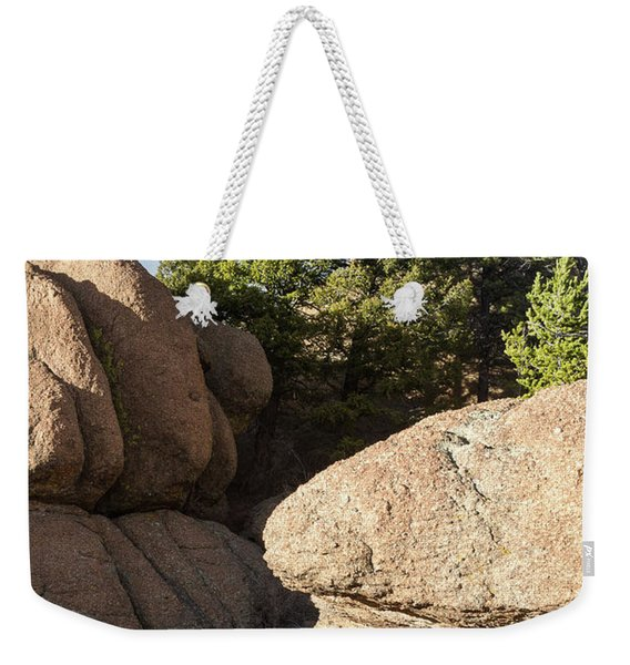 Weekender Tote Bag featuring the photograph Pines In Granite by Tim Newton
