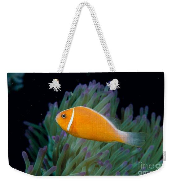 Pink Anemonefish Weekender Tote Bag