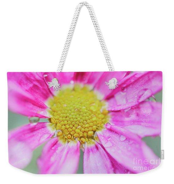 Pink Aster Flower With Raindrops Weekender Tote Bag