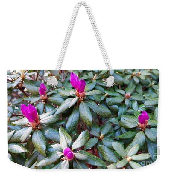 Pink Flowers, Bush Weekender Tote Bag
