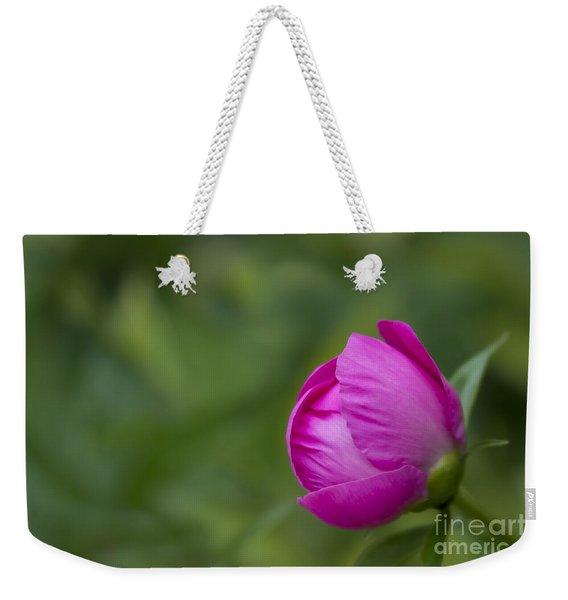Pink Globe Weekender Tote Bag