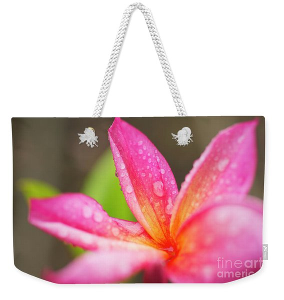 Weekender Tote Bag featuring the photograph Pink Plumeria Detail by Charmian Vistaunet