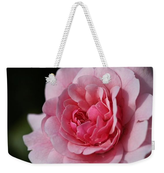 Pink Shades Of Rose Weekender Tote Bag