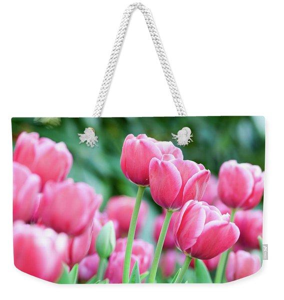 Pink Tulips 716 Weekender Tote Bag