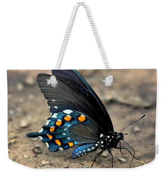 Pipevine Swallowtail Close-up Weekender Tote Bag