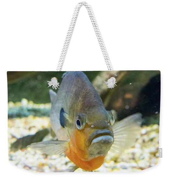 Piranha Behind Glass Weekender Tote Bag