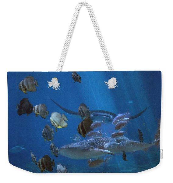 Placid Kingdom  Weekender Tote Bag