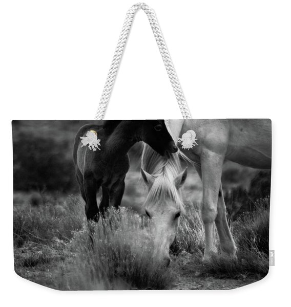 Weekender Tote Bag featuring the photograph Placitas 2 by Catherine Sobredo