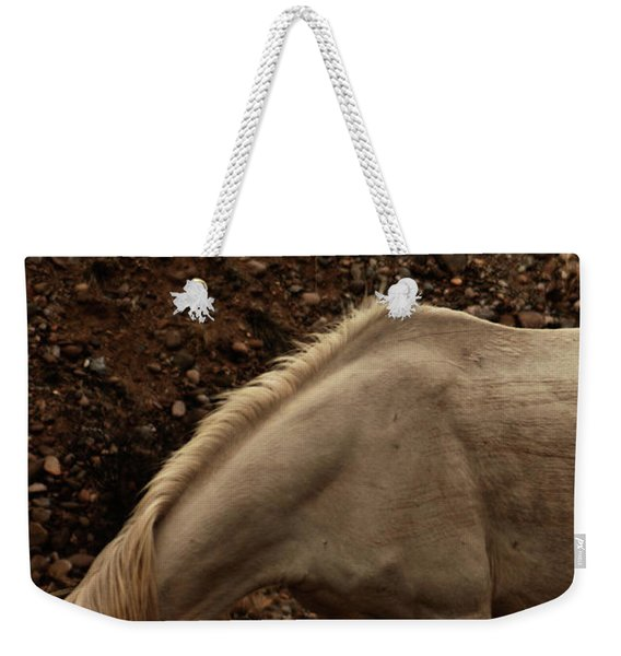 Weekender Tote Bag featuring the photograph Placitas 6 by Catherine Sobredo