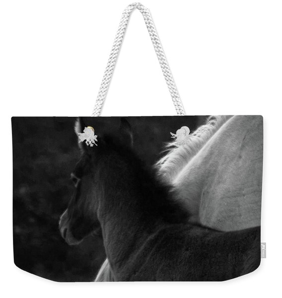 Weekender Tote Bag featuring the photograph Placitas 9 by Catherine Sobredo