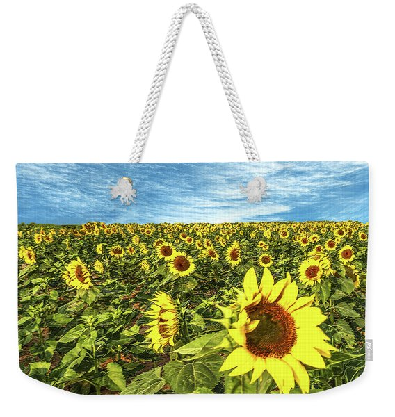 Weekender Tote Bag featuring the photograph Plains Sunflowers by Scott Cordell