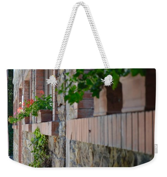 Plants In Windows Weekender Tote Bag