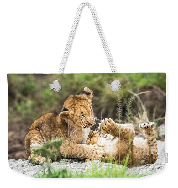 Weekender Tote Bag featuring the photograph Playing Around by Robin Zygelman