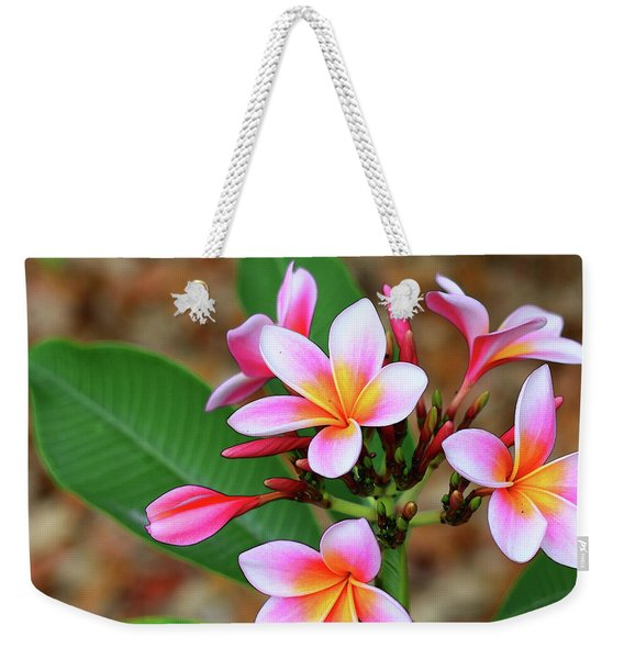 Plumeria Flower Art - Tropical Queen - Sharon Cummings Weekender Tote Bag