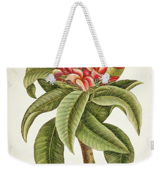 Plumeria Rubra Botanical Print Weekender Tote Bag