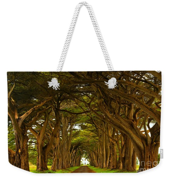 Point Reyes Cypress Tunnel Weekender Tote Bag