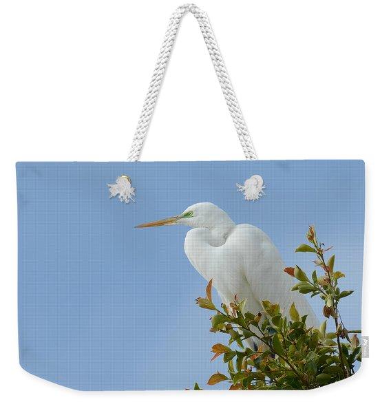 Poised 2 Weekender Tote Bag