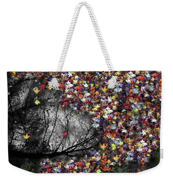 Weekender Tote Bag featuring the photograph Pollacks Pool by Wayne King